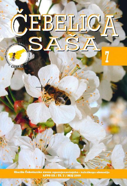 sasa7