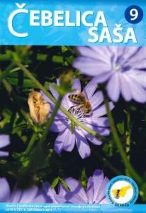 sasa9