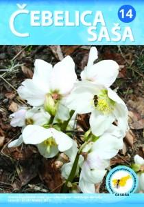 sasa14